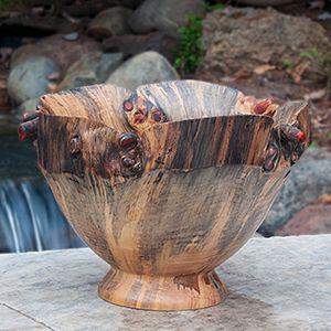 Nolfolk Island Pine Bowl