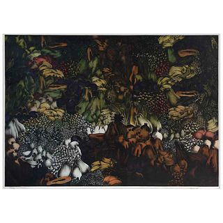 "ISMAEL VARGAS, Untitled, Signed, Etching 53 / 70, 40.1 x 62.5"" (102 x 159 cm)"
