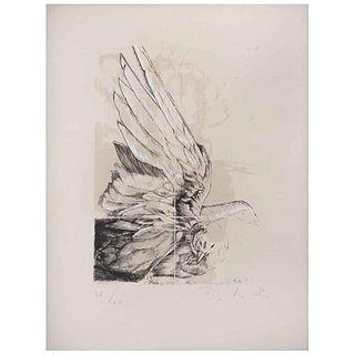 """ROBERTO CORTÁZAR , Paloma, Signed, Lithograph 26 / 60, 10.6 x 7.4"""" (27 x 19 cm)"""