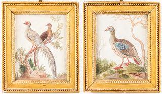 Chinese Export Watercolors of Birds in Relief, Pr