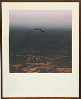 LAWRENCE DAWS (AUSTRALIAN, BORN 1927), OMEN BIRD, artist's