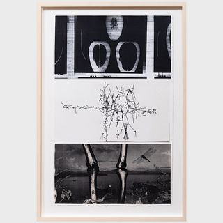 Cornelia Cottiati, Richard Staub and Rick Shaefer: Untitled