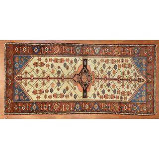 Semi Antique Bahktiari Rug, Persia, 4.6 x 9.7