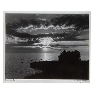 "A. Aubrey Bodine. ""Duck Hunters,"" photograph"