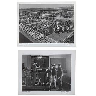 A. Aubrey Bodine. Two Union Stockyard Photos