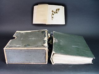 Antique Collection of Flora Book
