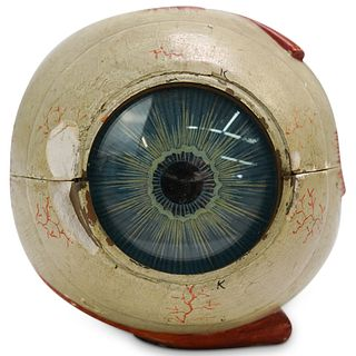 Antique Medical Anatomical Human Eye Model