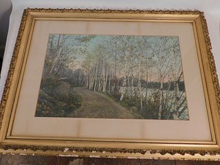 LARGE COLORED PHOTO BIRCHES