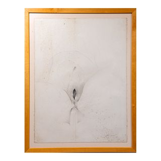 Nunik Sauret. Sin título. Firmado y fechado 87 Lápiz e intaglio. Enmarcado. 76 x 55 cm