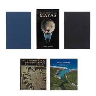 COLECCIÓN MAYA. a) El Gran Arrecife Maya. b) Mayan Cities of the Mexican Caribbean. Piezas: 5.