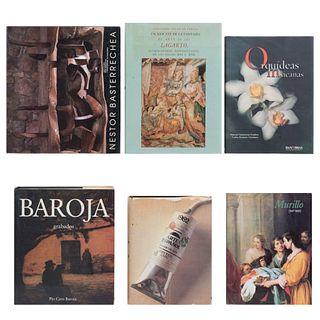 LIBROS SOBRE ARTE MEXICANO Y ESPAÑOL. a) Orquídeas Mexicanas. b) En Rescate la Fantasía. c) Bartolomé Estéban Murillo. Pzs: 6.