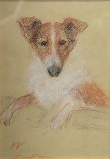 "Erika Von Kager (German, 1890 - 1975), Collie, pastel on paper, signed lower right 'E. Von Kager', sight size 13 1/4"" x 9 1/4""."