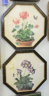 """Three Framed Botanical Watercolors, to include strawberry plant with a butterfly, sight size 9"""" x 11"""", unsigned; pair of blossoming flowers in pot, si"""