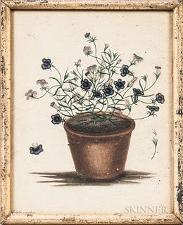 Hand-colored Print of a Pot of Purple and White Flowers