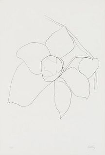 Ellsworth Kelly  Camellia II (Axsom 42)