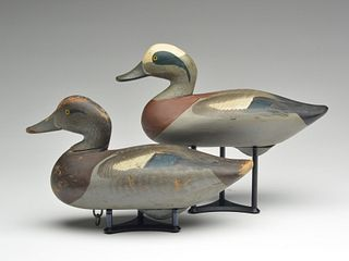 Pair of widgeon, Madison Mitchell, Havre de Grace, Maryland.