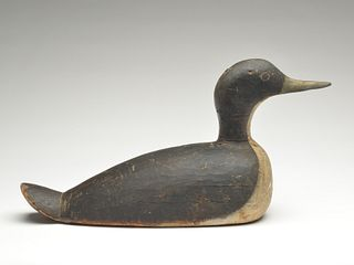 Working loon decoy from Shelburne County, Nova Scotia, Unknown maker, 1st quarter 20th century