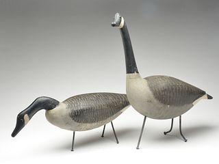 Pair of Canada geese field decoys, Wilbur Roy Mill, Kennsington, Prince Edward Island.