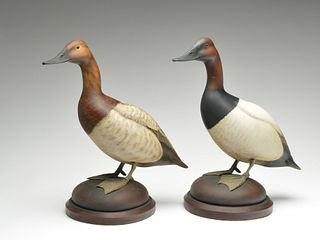 Excellent pair of full size standing canvasbacks, William Gibian, Onancock, Virginia.