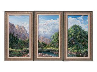 Douglas Oliver (American, b. 1942) Mountain Landscape