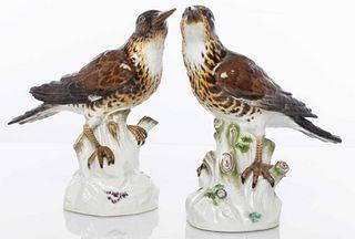 Meissen Porcelain Models Of Birds, Pair