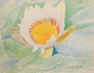 Joseph Stella (American, 1877-1946) Waterlily