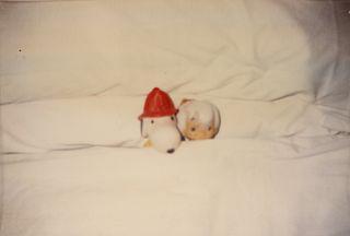 "Felix Gonzalez-Torres(American, 1957-1996)""Untitled"", 1994"