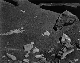 Edward Weston (American, 1886-1958))  Point Lobos, 1948 (printed later)