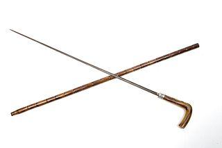 Horn Sword Cane
