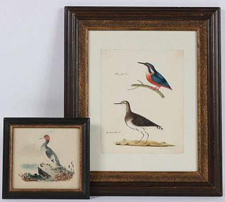 Two Watercolors on Paper, Studies of Birds
