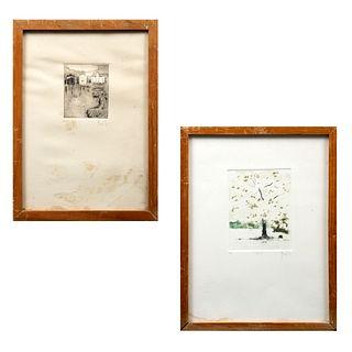 """VICENTE GANDÍA Lote de 2 obras gráficas. Consta de: """"Peral"""" y Sin título Firmados Grabados 6/28 y 5/21 Enmarcados."""