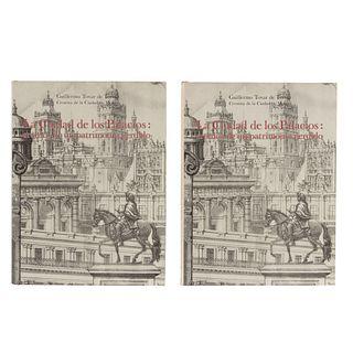 Tovar de Teresa, Guillermo. La Ciudad de los Palacios. Crónicas de un Patrimonio Perdido. México:  1990. Piezas: 2.
