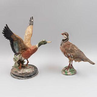 Lote de 2 piezas. SXX Consta de: a) Ave. Taxidermia. Con base de yeso. 30 cm altura b) Figura decorativa de pato silvestre. En resina.