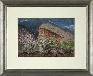 Albert Schmidt, Plum Trees and Mesa