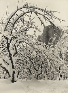 ANSEL ADAMS - Half Dome, Apple Orchard, Winter, Yosemite, 1935