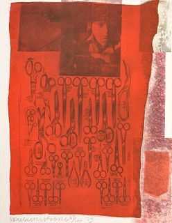 """Robert Rauschenberg """"More Distant Visible Part of the Sea"""" Screenprint"""