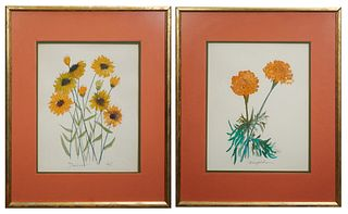 """Zella Funck (1917-2009, Louisiana), """"Marigold"""" and """"Daisies,"""" 20th c., watercolors on paper, signed lower right, titled lower left, presented in gilt"""
