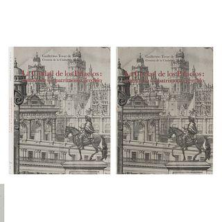 Tovar de Teresa, Guillermo. La Ciudad de los Palacios: Crónica de un Patrimonio Perdido. México: Vuelta, 1990.  Primera edición. Pzs: 2