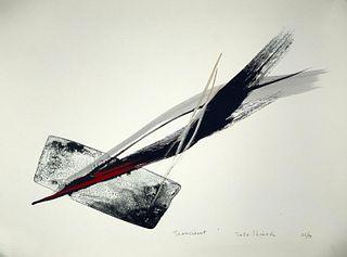 """Toko Shinoda Lithograph """"Transient"""""""