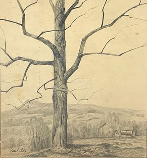 Paul Riba Drawing, Tree on a Hill