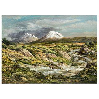 CARLOS PELESTOR. Arroyo en el valle. Firmado. Óleo sobre tela. 56 x 40 cm