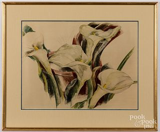Charles Demuth collotype, Calla Lilies