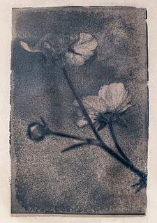 SUSAN CHAINEY, Blue Flower