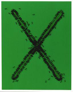 ANNE VERALDI, Ants #37