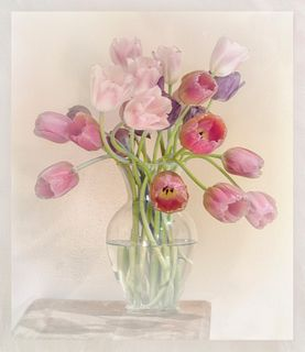 DOLORES FRANK, Tulips