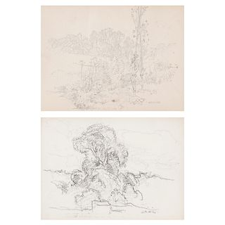 Grp: 2 Walter Griffin Landscape Drawings