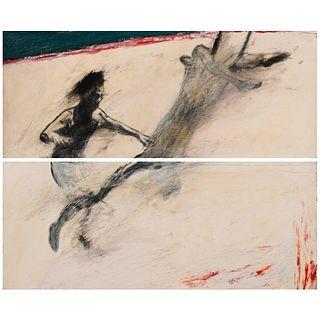 Gary Hall Diptych Acrylic & Graphite on Canvas