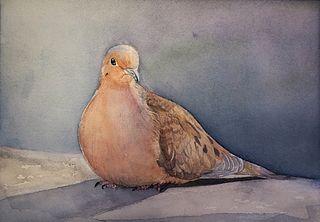 """""""Mourning Dove"""" by Aki Kano, Katonah, NY"""