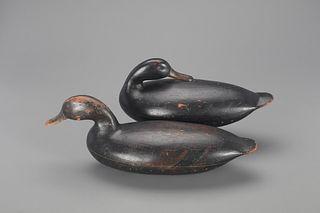 The Will-Hunter Blair Black Duck Pair, John Blair Sr. (1843-1929)