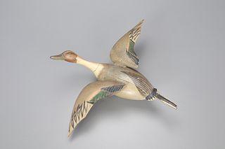 Flying Pintail Drake, Ira D. Hudson (1873-1949)